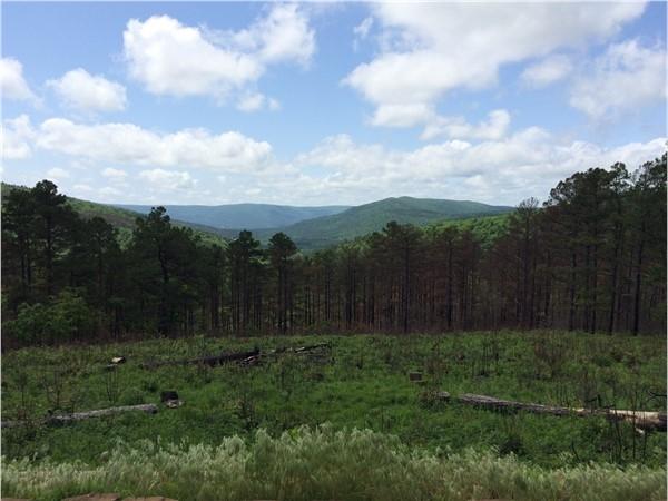 Scenic view in Ouachita Mountains of Southeastern Oklahoma