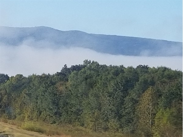 A beautiful morning of fog drifting along Cavanal Hill....world's highest hill in Leflore County