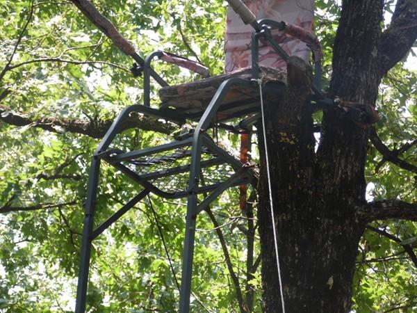Whitetail stalking chair