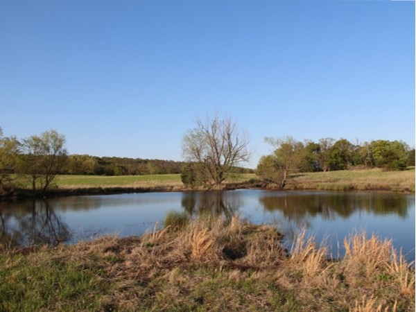 Pond fishing and country living, doesn't get much better than this.  Cattle, horses and Oklahoma