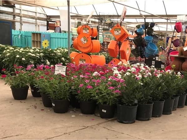 TLC Garden Centers is highly preferred by our new home owners in Edmond and OKC