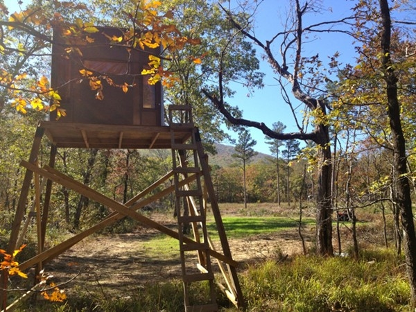 Home away from home. Whitetail deer, bear, turkey, small game. Oklahoma wildlife