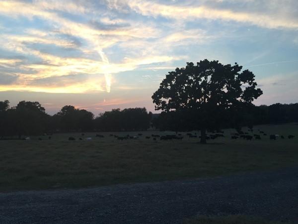 Western skies in Eastern Oklahoma