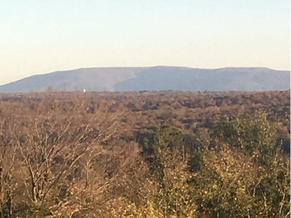 Cavanal Hill is the worlds highest hill in Poteau in Leflore County