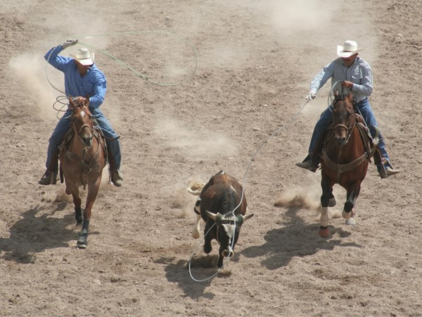 Team roping in Poteau, OK's Cowboy Country
