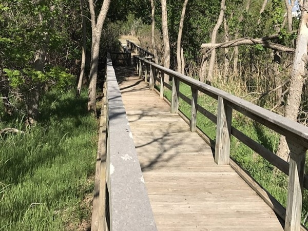 The raised boardwalks of the Washita Wildlife Refuge allow for easy access to beautiful nature trail