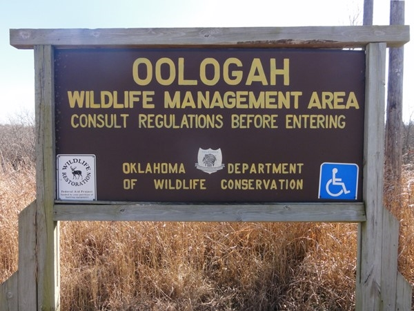 Oologah WMA covers 12,941 acres in Nowata and Rogers counties