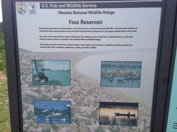 Watch nature's wonder at Washita National Wildlife Refuge