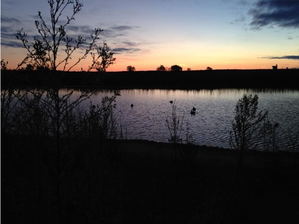 Northwest OK is a bird and duck hunters paradise. Who wouldn't want to wake up early and see this
