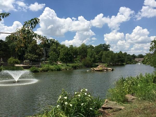 Swan Lake Park neighborhood