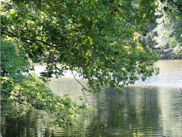 Kiamichi River - Clayton, Oklahoma