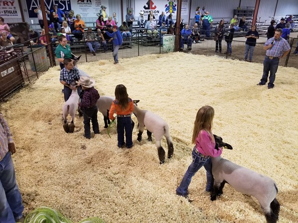 Market Lamb Exhibitors at the LeFlore County Fall Fair in Poteau