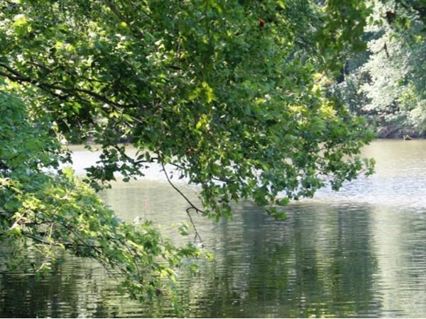 Kiamichi River near Clayton