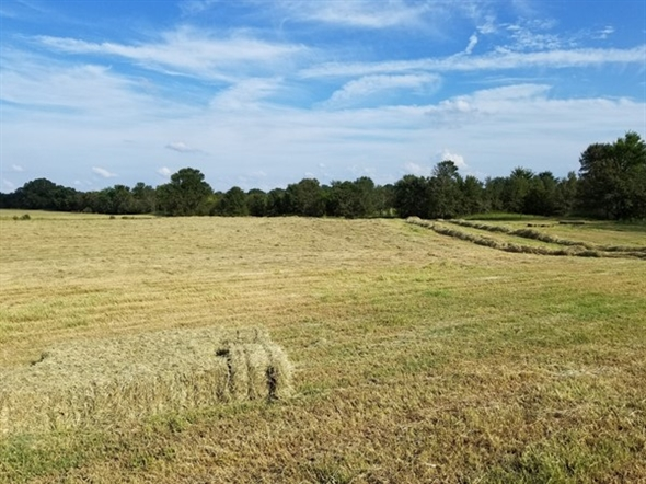 Square baling in Southeastern Oklahoma - Leflore County.  Weather is cooperating