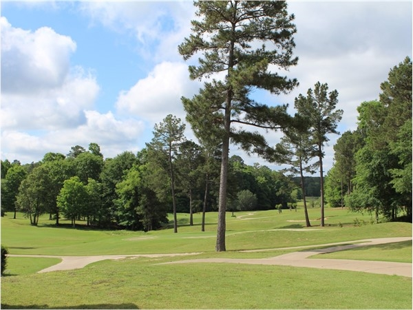 Calvert Crossing features green rolling hills and a variety of golf tournaments