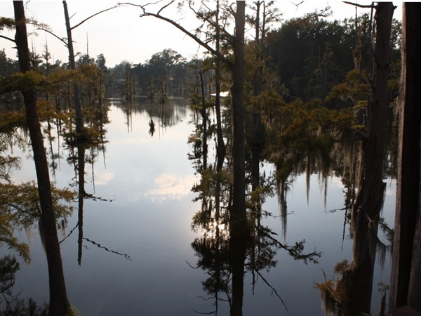 Bayou DeSiard offers beautiful sunset views