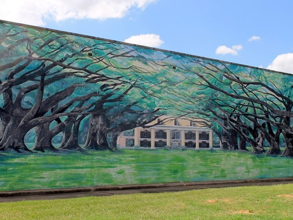 Live Oak Avenue mural by Merlin Buddy West and Abby Kent in Bossier's East Bank District