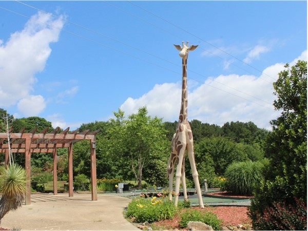 The larger-than-life Giraffe at Thomas Nursery & Feed's Pavilion is a site to behold