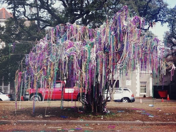 Mardi Gras 2016 left its mark on Lafayette