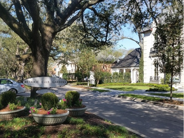 Lined with trees and stately homes, Northline Street marks the entrance to Metairie Club Gardens