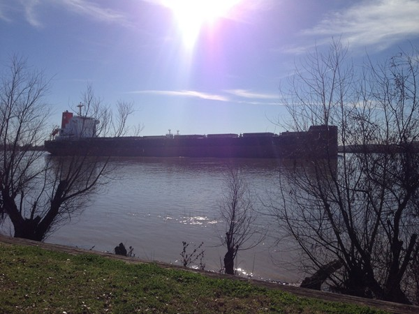 Cargo ship making its way down the Mighty Mississippi - as seen from The Fly