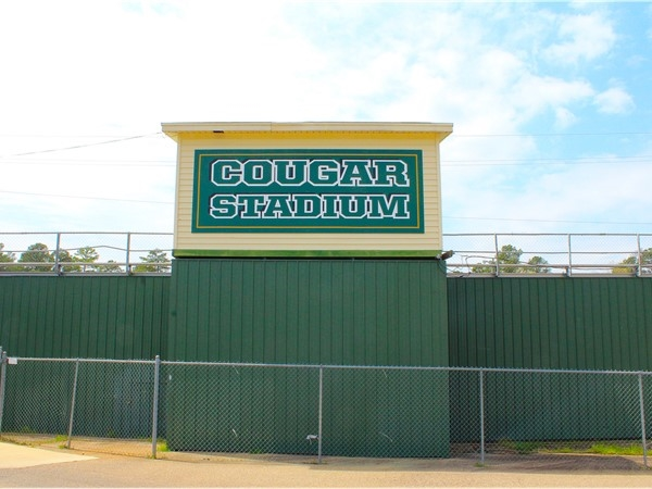 Bathed in green, gold and white, Cougar Stadium at Cedar Creek School offers various football levels