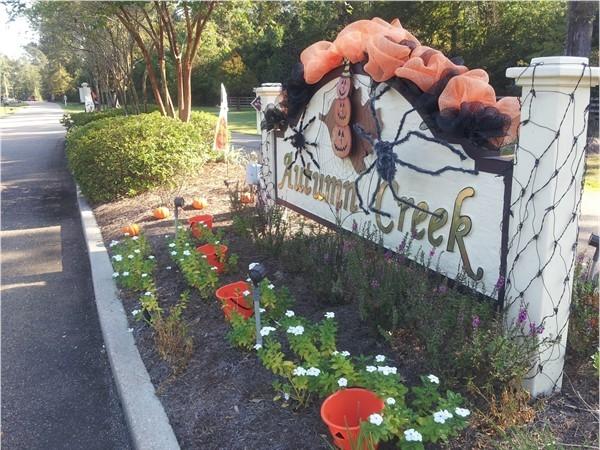Autumn 2015 at entrance of Autumn Creek Subdivision in Madisonville LA