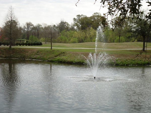 One of the many lakes in University Club Plantation!