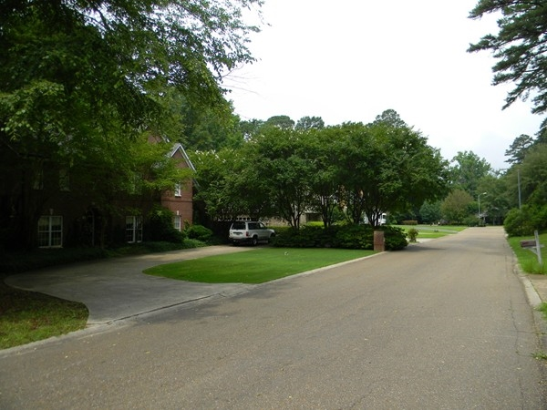 Foxxwood Drive is centrally located and provides easy access to Cedar Creek School