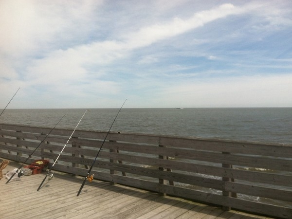 Great place to fish, see pelican's, and even Dolphin watch!