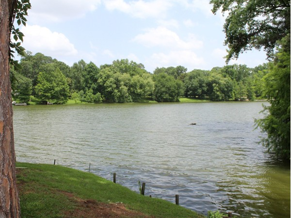 Lush landscapes, towering trees and a beautiful lake can all be found at Country Club Place