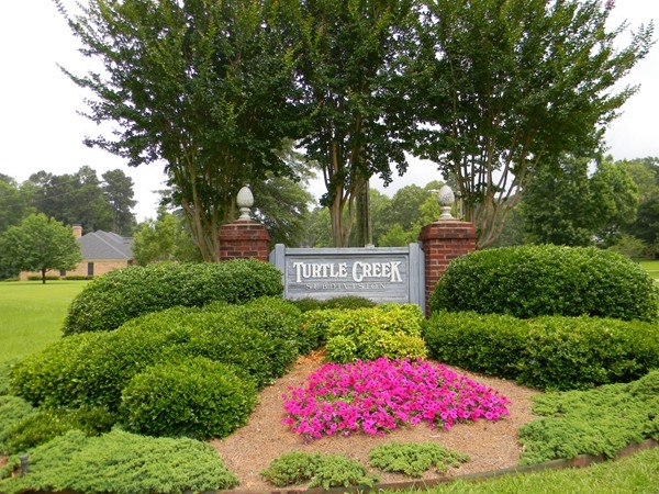 Charming subdivision located very close to the Cedar Creek School Complex