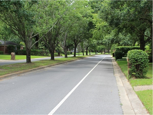 River Oaks offers an established neighborhood with gorgeous landscaping and views of the Bayou