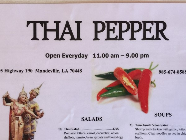 Thai Pepper has awesome Coconut-Chicken soup and a host of other yummies