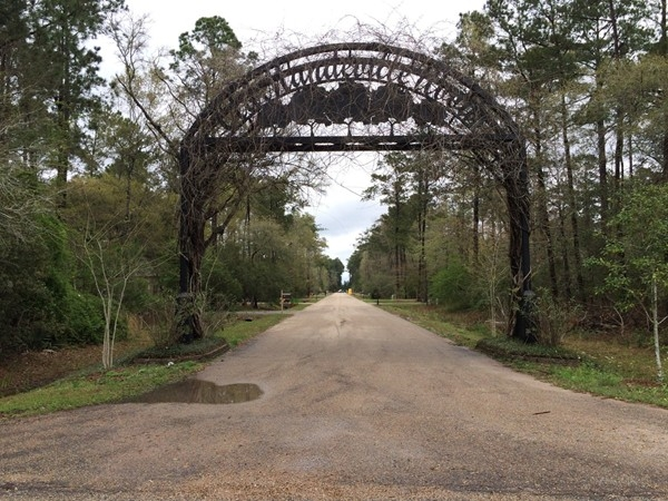Old Mandeville Woods features a stunning one street subdivision near The Causeway