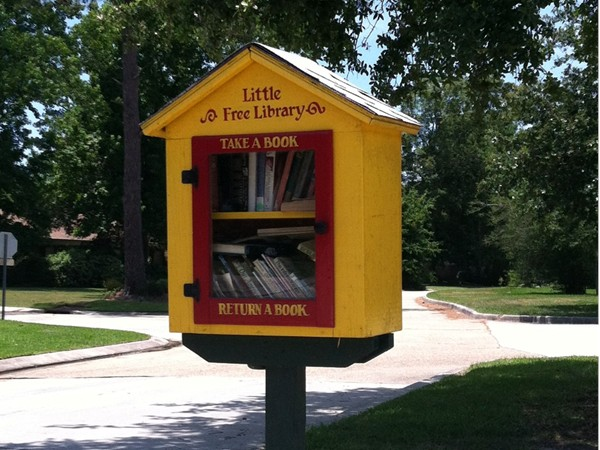 Adorable Mandeville neighborhood library! No card required