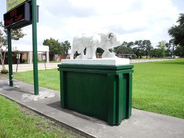 Acadiana High School Mascot - The Acadiana Wrecking Rams