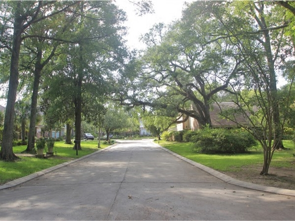 Many tree-lined streets in River Ridge