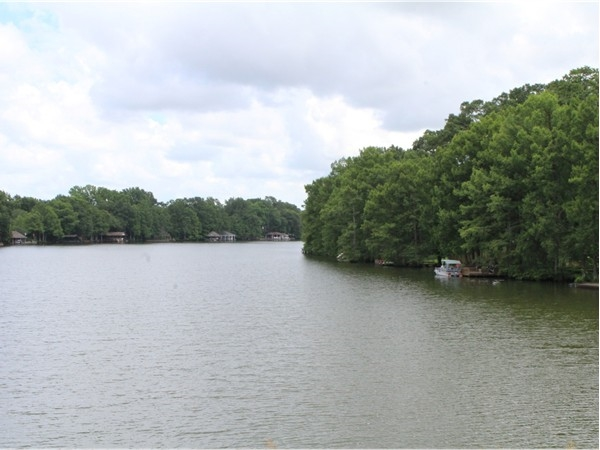 The River Oaks subdivision is nestled along the Bayou DeSiard
