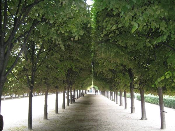 Paris. Looks like City Park, no?
