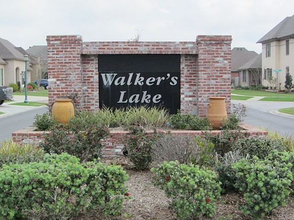 Walkers Lake entry