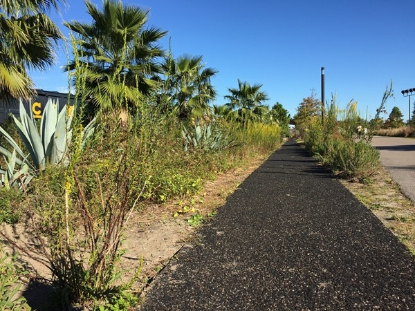 Beautiful garden path through Crescent Park in the Bywater