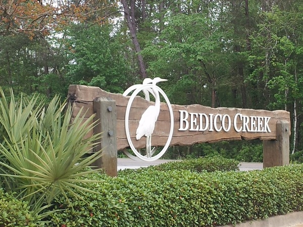 Bedico Creek Subdivision is on large acreage with many new-build homes and more to come