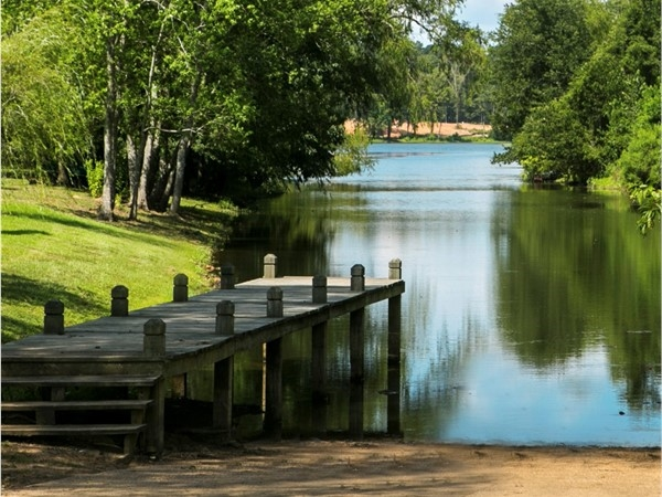 Private boat launch to the serene lake in the gated community Lakeside on Long Lake