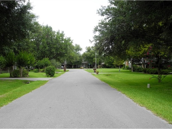 Oakshire Estates - scenic subdivision with large lots and spreading live oaks