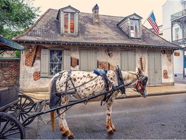 Lafitte's Blacksmith Shop ~ Bourbon Street in the French Quarter