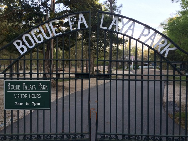Bogue Falaya Park in downtown Covington.