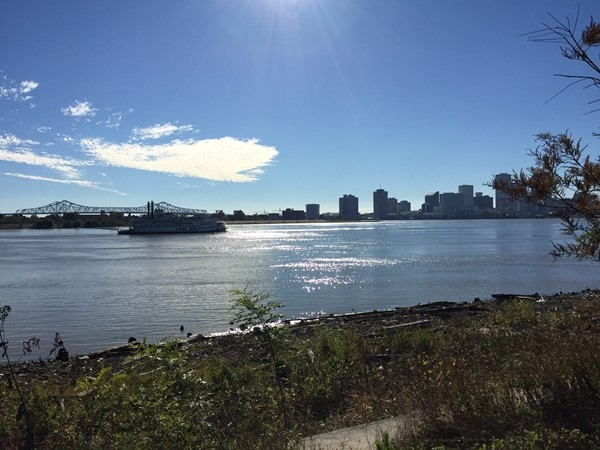 View of Downtown from Crescent Park in the Bywater