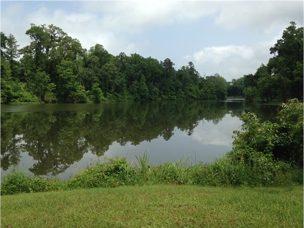 Partial view of Dogwood Lake near boat launch