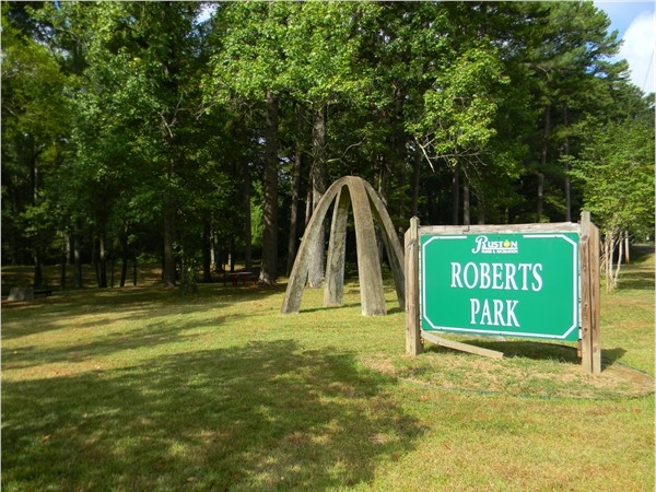 Roberts Park- great place for family picnics